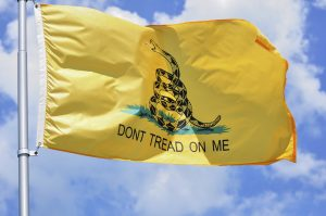 Don't Tread on City Property